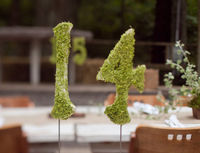 8-24309_moss_covered_table_numbers_for_weddings_and_events_1350406968_99