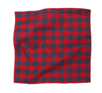 Buffalo-plaid-pocket-square-jack-spade