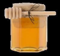 Bumbleberry-chunk-honey-terrain
