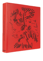 Inez-and-vinood-book