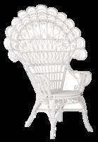 Peacock-chair
