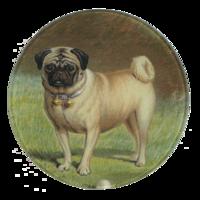 Pug-plate-john-derian