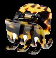 Tortoise-medium-clip