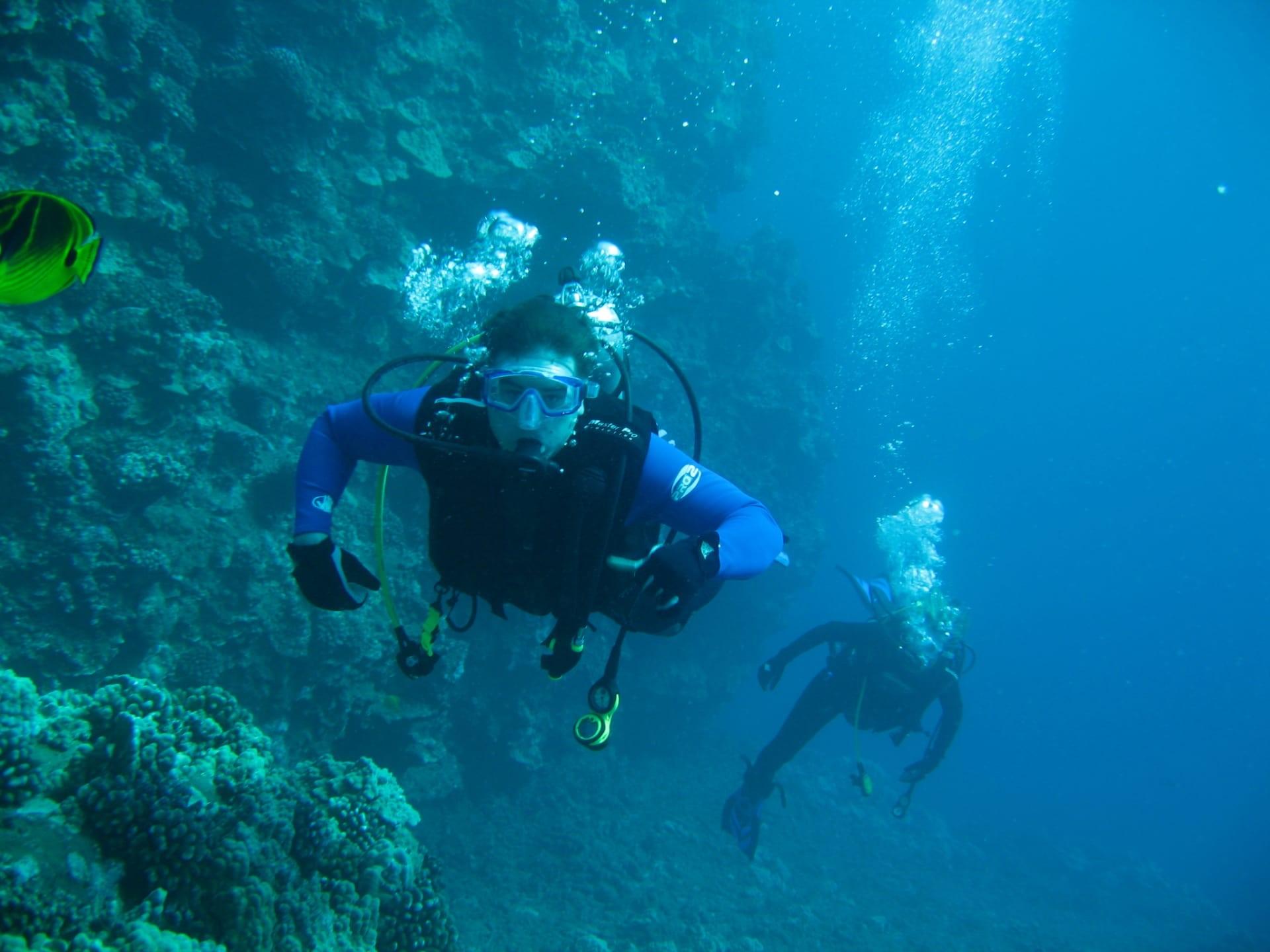 Lahaina Snorkel & SCUBA Dive
