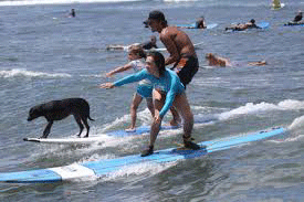 Product South Maui Surf Lessons