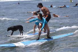 Product South Maui Surf Lesson