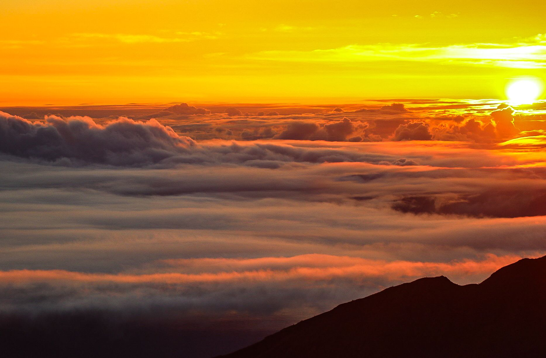 Product Haleakala Sunrise Tour