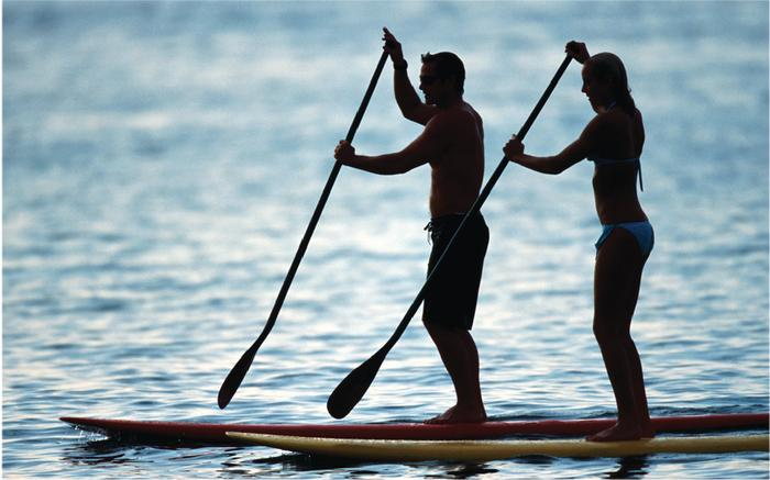 Private Stand Up Paddle Lesson - Local Guide