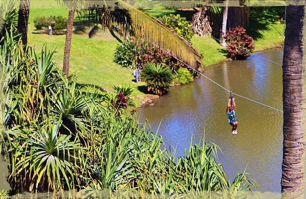 Family Friendly Tropical Zipline