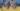 The 2020 Santa Barbara Showdown Lacrosse Tournament