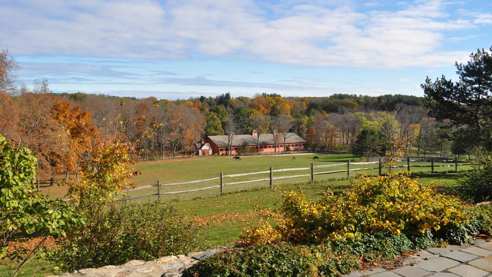 Hilltop Horse Ranch