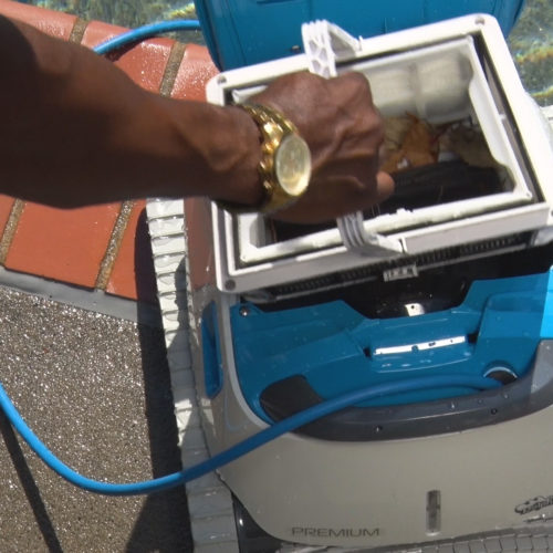 Dolphin Premium Robotic Pool Cleaner Filter Basket