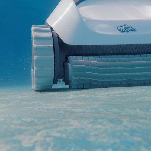 Dolphin E10 Underwater Image