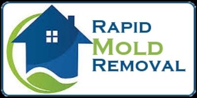 Rapid Mold Removal LLC