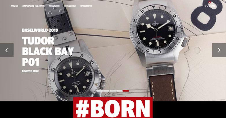 tudor luxury brand website design
