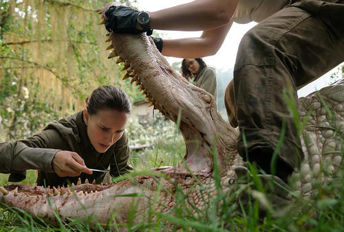 Watch the Official Trailer for ANNIHILATION!
