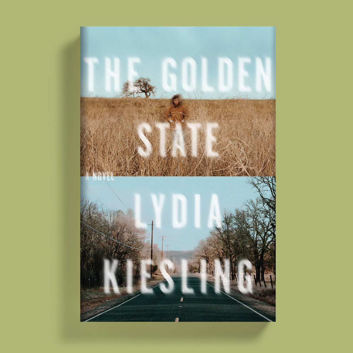 Goldenstate bookshot