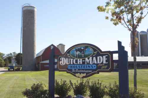 Dutch-Made Dairy Farm