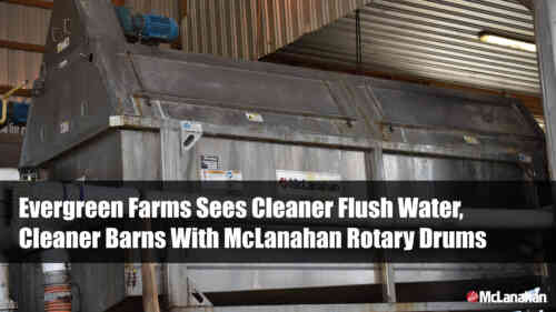 Evergreen Farms Sees Cleaner  Flush Water, Cleaner Barns With McLanahan Rotary Drums