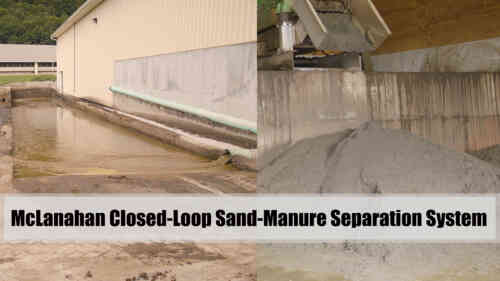 Closed-Loop Sand-Manure Separation System