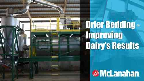 Drier Bedding - Improving Dairy's Results