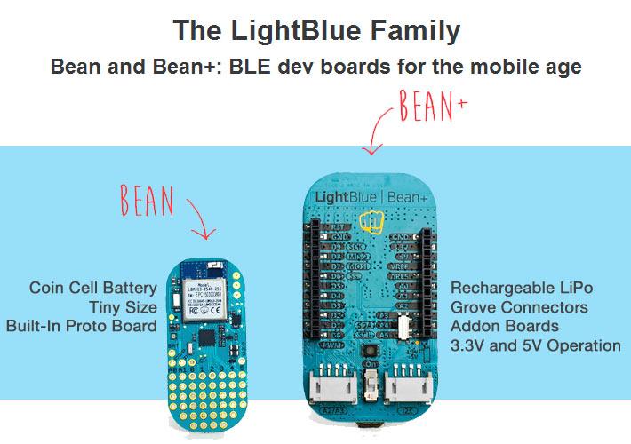 LightBlue Bean