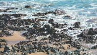 Jagged Beach Rocks