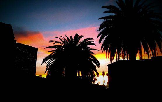Liebich_sunset