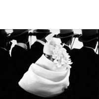 Frank HORVAT (Né en 1928) - GIVENCHY HAT (POUR « JARDINS DES MODES »),
