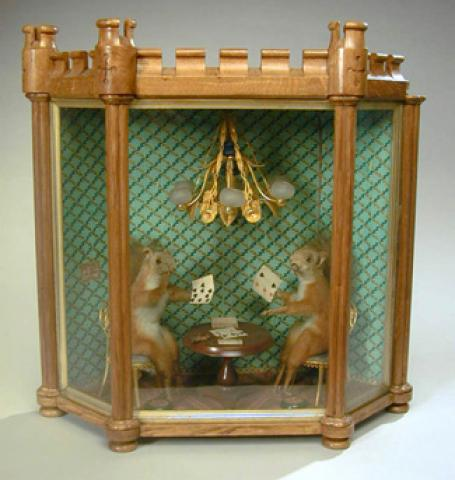 Victorian Taxidermy Group