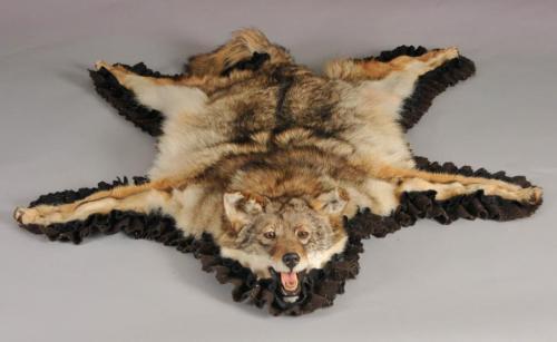 Taxidermy Wolf Rug