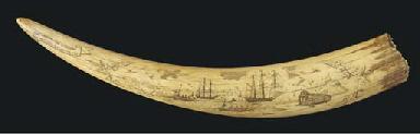 A SCRIMSHAW-DECORATED WALRUS TUSK