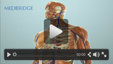 MedBridge Education Video