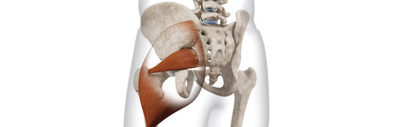 Sacroiliac Joint Dysfunction A Crucial Element Of Piriformis