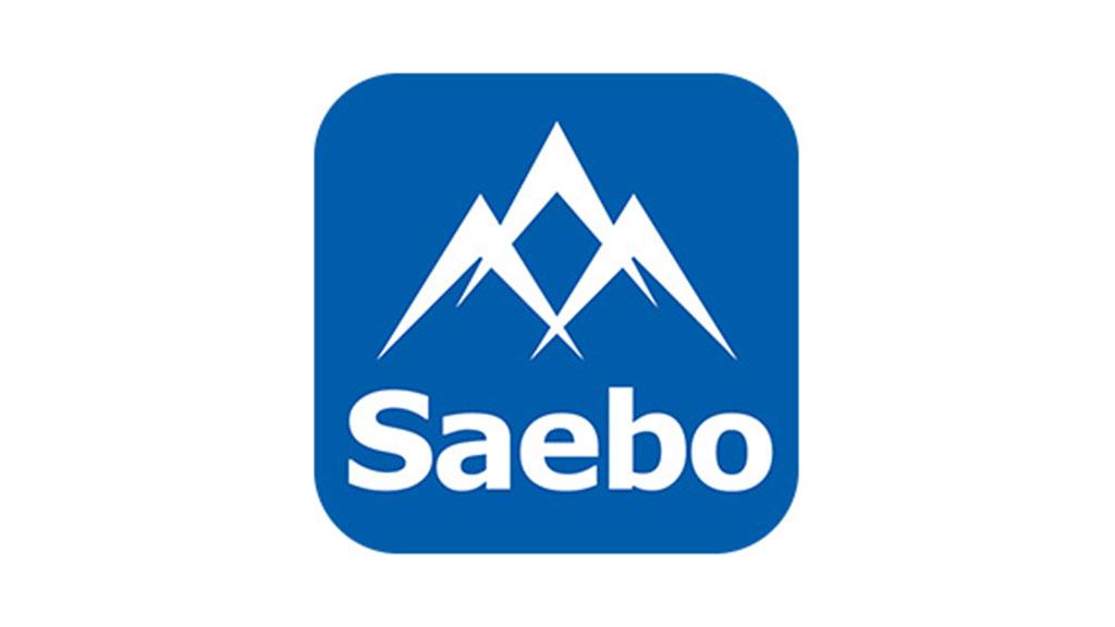 Saebo