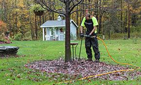 $99 for $200 Credit Towards Tree and Shrub Organic Fertilizer