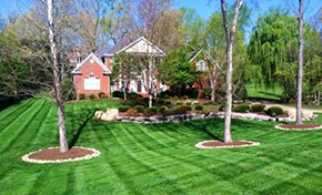 $475 for 5 Cubic Yards of Premium Mulch Delivered and Spread