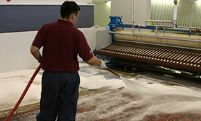 $199 for 8x10 Oriental Rug  Cleaning