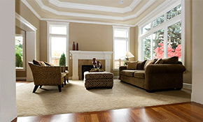 $149 for a Sofa and Loveseat OR Chair Cleaning