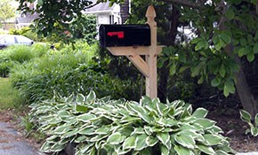 $225 for Wood Post/ Standard Mailbox and Installation Package