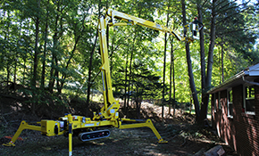 $1,999 for 3 Tree Service Professionals for 6 Hours Each