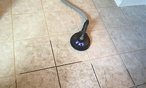 $99 for Tile and Grout or Deep Hardwood Floor Cleaning