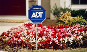 $359 for Professional Installation of ADT Pulse Monitored Security System with Automation