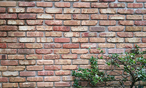 $180 for $200 Credit Toward Tuckpointing