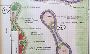 $199 Landscaping Evaluation and Basic Design