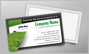 $44 for 500 Full Color, High Gloss, Ridiculously Thick Business Cards with Free Shipping