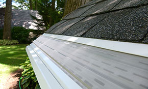 $49 for $500 Credit Toward MasterShield Gutter Guards