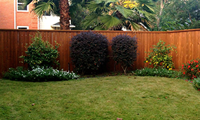 $540 Fence or Deck Fence Stain and Seal--Materials Included