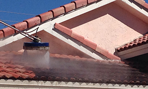 $225 for Low-Pressure Chemical Roof Cleaning
