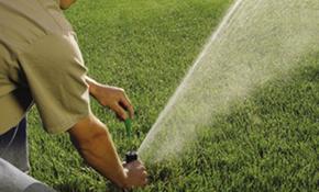 $79 Sprinkler Evaluation
